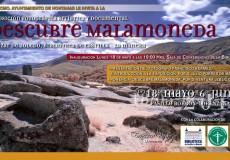 DESCUBRE MALAMONEDA